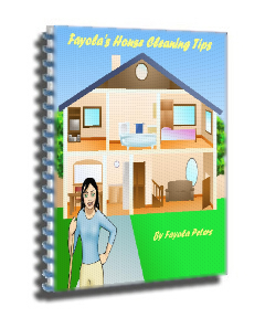 Fayola's House Cleaning Tips